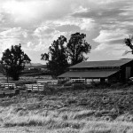 EarlyVailRanch